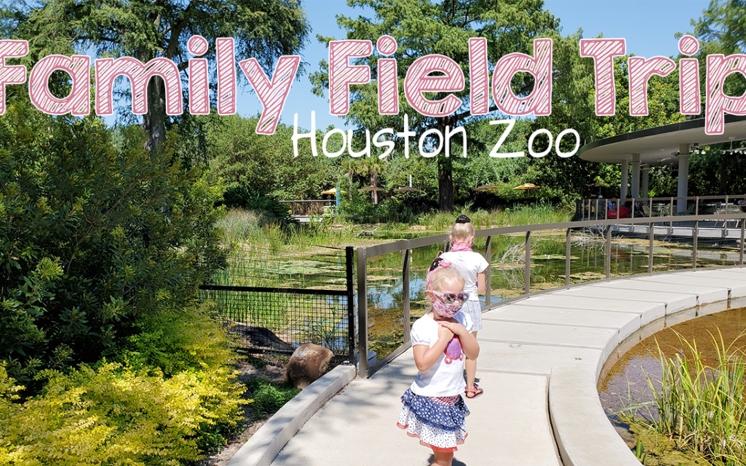 Family Field Trip Houston Zoo