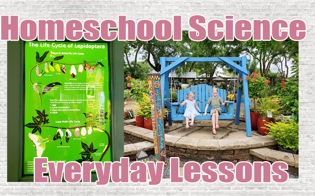 HOMESCHOOL SCIENCE EVERYDAY LESSONS